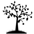 Tree silhouette black design on white Stock Photography