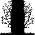 Tree silhouette old, season Stock Image