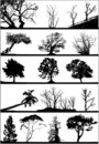 Tree silhouettes set Royalty Free Stock Photos