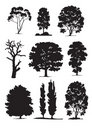 Tree silhouettes (vector) Stock Photos