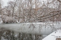 Tree with snow by a frozen river Royalty Free Stock Photo