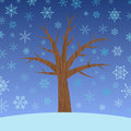 Tree with snowflakes Royalty Free Stock Photo