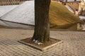 Tree in spring snowbreak nesvizh Stock Photo