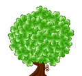 Tree for St. Patricks Day with four le Stock Image