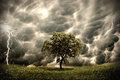 Tree on stormy landscape eco concept with lightening and storm like ecological Stock Image