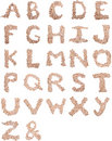 Tree Stump Alphabet Royalty Free Stock Images