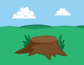Tree stump large in grassy field Royalty Free Stock Image