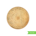 Tree stump, round cut with annual rings vector. Wooden cross section. Vector illustration. Realistic isolated circle tree can be u Royalty Free Stock Photo