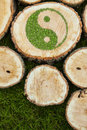 Tree stumps on the grass with ying yang symbol Royalty Free Stock Photo
