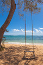 Tree swing on a tropical beach Royalty Free Stock Image