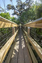 Tree top canopy walk a wooden in the forest Stock Photo