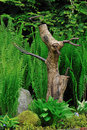 Tree trunk dog sculpture in the shade garden Royalty Free Stock Photo