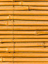 Tree trunks a bamboo Royalty Free Stock Images