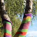 Tree trunks in summer park covered with bright knits Royalty Free Stock Photography