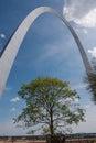 Tree under Gateway Arch Royalty Free Stock Photo