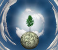 Tree US Currency Sphere Stock Photography