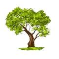 Tree Vector Illustration  Hand...