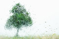 Tree through wet windscreen on rainy day Royalty Free Stock Images
