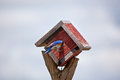 Treehouse bluebird a sticks its head inside a birdhouse Royalty Free Stock Photo