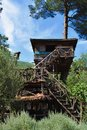 Treehouse nature in the backyard, redneck house