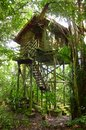 Treehouse wooden, eco tourism resort Royalty Free Stock Photo