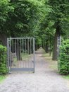 Treelined path and open gate Royalty Free Stock Photo