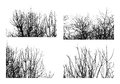 Trees black silhouettes of fruit isolated on white background set Royalty Free Stock Photography