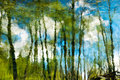 Trees and blue sky with clouds reflection Royalty Free Stock Photo