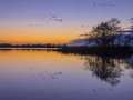 Trees and Clouds reflecting in a lake during a beautiful Sunset Royalty Free Stock Photo