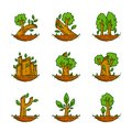 Tree, Plant, Forest, Nature, Botanical Illustration, Trees Collection