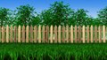 Trees and fence on field d grow in the behind the wooden fences Royalty Free Stock Image