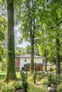 Trees in forest with flora and house with garden Royalty Free Stock Photo