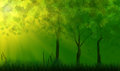 Trees in green grass under sunlight Royalty Free Stock Image