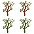 Trees isolated with branches on white background