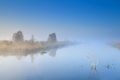 Trees on lake in fog morning dense Royalty Free Stock Images