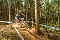 In the trees pietermaritzburg south africa april jenny rissveds scott odlo mtb racing team during final u women race of round uci Stock Photo