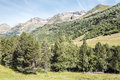 Trees in pyrennes benasque mountains with situated the spanish province of huesca it s a sunny day mountains Stock Photo