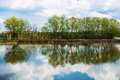 Trees reflected in water calm lake Royalty Free Stock Images