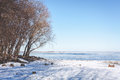 Trees on the shore of frozen river Royalty Free Stock Photo