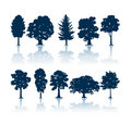 Trees silhouettes Royalty Free Stock Photo