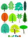 Trees various of in simplified flat vector cartoon including oak birch weeping willow poplar maple beech coconut tree spruce Royalty Free Stock Photography