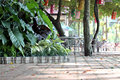 Trees and walkways in the park with tables placed at night you see light from lamp Stock Photo