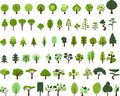 Trees witth different styles Royalty Free Stock Photo