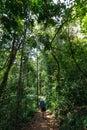 Trekker walks in jungles sri lanka Stock Photography