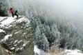 Trekkers op de top bij de winter Royalty-vrije Stock Afbeelding