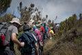 Trekkers passing through moorland on Kilimanjaro Royalty Free Stock Photo