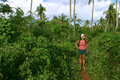 Trekking attraverso la giungla 2 Fotografia Stock Libera da Diritti