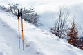 Trekking poles in snow Stock Image