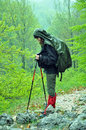 Trekking in the rain woman standing while forest Royalty Free Stock Photos