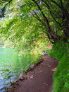 Trekking trail inside plitvice national park for visitors along the lake at Stock Images